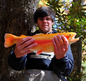 Fly Fishing Pigeon Forge, Fly Fishing Gatlinburg, Great Smoky Mountains Fly Fishing, Cherokee Fly Fishing