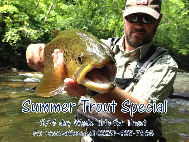 Summer Trout Special, Fly Fishing the Smokies, Great Smoky Mountains National Park, Fly Fishing Guides in Gatlinburg, Pigeon Forge, Sevierville, Trout Fishing