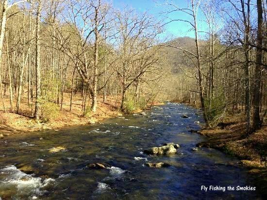 Hazel Creek, Fly Fishing, Great Smoky Mountains National Park, Fly Fishing the Smokies, Hazel Creek Camping